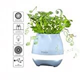 Music Flowerpot Ruifeng Rechargeable Wireless Smart Touch Plant Worked as Piano with Night Light and Bluetooth Speaker Function (Blue)
