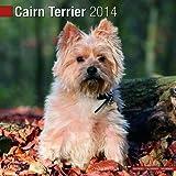 Avonside Publishing Cairn Terrier 2014 (Calendar 2014)
