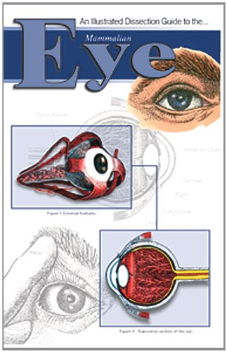 Frey Scientific 597054 Mini-Guide to Mammalian Eye Dissection - 1