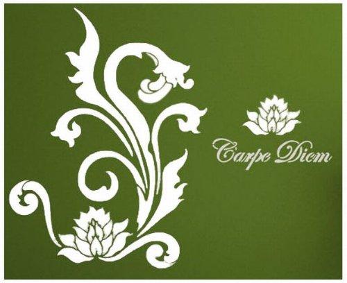 home-design-b6026-wandschablone-carpe-diem-135-x-105-cm