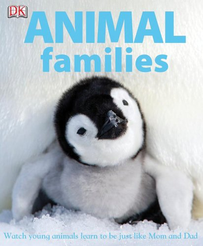 Animal Families front-1018545