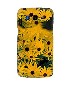 PickPattern Back Cover for Samsung Galaxy Grand 2 SM-G7106
