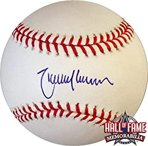 Randy Johnson Autographed Hand Signed Rawlings Official MLB Baseball