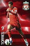 Liverpool FC Fernando Torres Maxi Poster 61×91.5cm