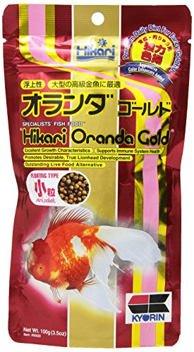 Hikari 3.5-Ounce Oranda Gold Floating Pellets for Pets, Mini (Pawtastic Pet Supplies compare prices)