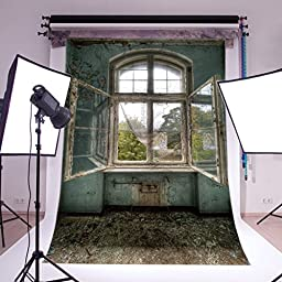 LB 6x9ft Old Windows Vinyl Photography Backdrop Customized Photo Background Studio Prop FG112