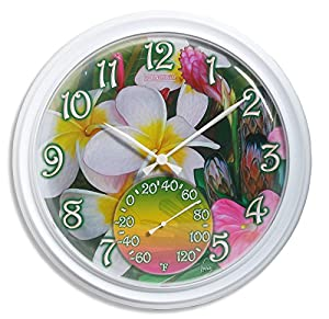 Amazon.com : Springfield 98002 Tropical Flowers Clock with Thermometer