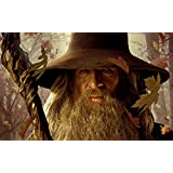 Posterhouzz Movie The Lord Of The Rings Gandalf HD Wallpaper Background Fine Art Paper Print Poster