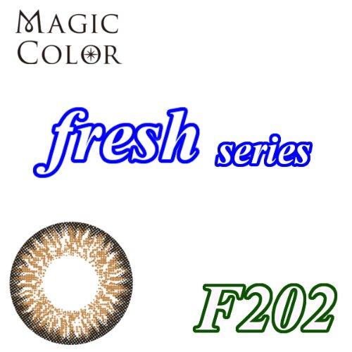 MAGICCOLOR (マジックカラー) fresh F202 度なし 14.0mm 1ヵ月使用 2枚入り