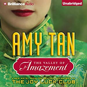 The Valley of Amazement Audiobook