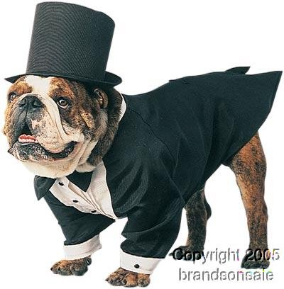 Pet Tuxedo Groom Dog Costume For X-small Dogs