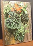 img - for Foliage House Plants - The Time-life Encyclopedia Of Gardening book / textbook / text book