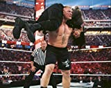 Brock Lesnar and Roman Reigns - WWE WrestleMania 31 20x24 Photo Poster (action) by Photo File [並行輸入品]