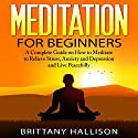 Meditation: Meditation for Beginners: How to Meditate to Relieve Stress, Anxiety & Depression and Live Peacefully Audiobook by Brittany Hallison Narrated by Sheila Stasack