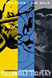 Jeph Loeb & Tim Sale: Yellow, Blue and Gray