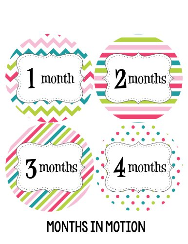 Months in Motion 212 Monthly Baby Stickers Baby Girl Months 1-12 Milestone Sticker