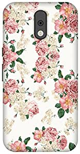 The Racoon Lean printed designer hard back mobile phone case cover for Motorola Moto G Plus 4th Gen. (Blossom)