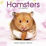 Hamsters Calendar - 2015 Wall calendars - Animal Calendar - Monthly Wall Calendar by Avonside