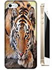 Lovely Power Tigers Cases Covers Phone Hard Back Cases Beautiful Nice Cute Animal hot selling cell phone cases for Apple Accessories iPhone 5C # 2