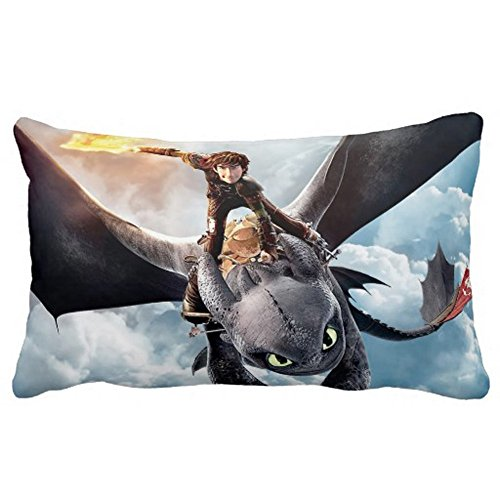 "Generic Custom Decorative How To Train Your Dragon Zippered Rectangle Pillow Case 20""X36"" (Two Sides) front-5847"