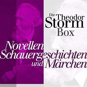 Die Theodor-Storm-Box Hörbuch