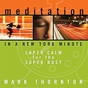 Meditation in a New York Minute Speech