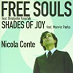 Free Souls-Shades of Joy [VINYL]