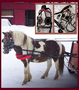 Buy Spotted Black & Red Trim Leather Mini Sh Pony Driving show training cart harness by HNPD