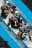 Carolina Panthers - Team 2015 Poster Print (24 x 36)