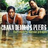 Witness Stand - Chaka Demus and Pliers