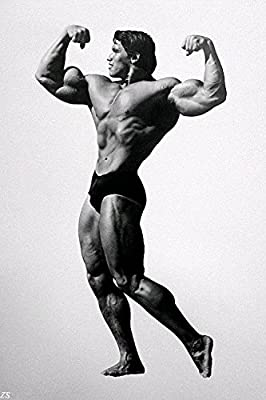 Lawrence Painting Arnold Schwarzenegger Bodybuilding Art Canvas Poster Gym Room Decoration Inch 02