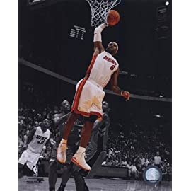 LeBron James 2010-11 Spotlight Action Sports Photo (8 x 10)