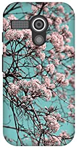 The Racoon Grip Sun Orchard Turquoise hard plastic printed back case / cover for Moto G (1st Gen)