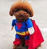 【ペット服/ペット用】スーパーマンスコスチューム 犬服 前掛けタイプ 小型犬向け M(首囲約24-28cm/着丈約26cm)