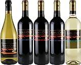 アルマ デ チリ 5品種 飲み比べ チリワインセット 750ml×5本