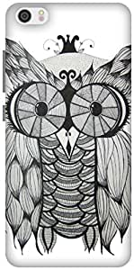 The Racoon Lean Owl hard plastic printed back case / cover for Xiaomi Mi 5