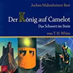 Das Schwert im Stein (Der König auf Camelot 1) | T. H. White