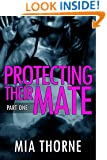 Protecting Their Mate, Part One: A BBW Shifter Werewolf Romance (The Last Pack)