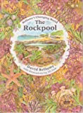 img - for The Rockpool (David Bellamy's Changing World) book / textbook / text book