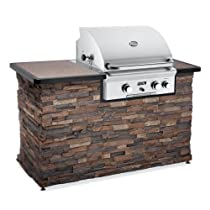 Hot Sale American Outdoor Grill 24 Inch Built-In Gas Grill