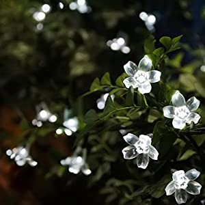 Innoo Tech String Solar Fairy Lights 50 Led Outdoor Garden Flower, White Blossom for Patio,Party,Path,Christmas from Innoo Tech