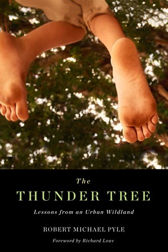thunder tree