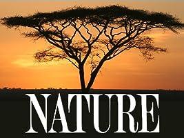 Nature Volume 2 [HD]