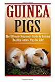 Guinea Pigs: The Ultimate Beginner's Guide to Raising Healthy Guinea Pigs for Life! (Guinea Pigs - Guinea Pig Care - Guinea Pig Books - Guinea Pig Nutrition - Guinea Pigs for Beginners)
