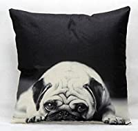 """Yecz Cotton Linen Square Decorative Cushion Cover Sofa Throw Pillowcase 18"""" x 18""""Dog from buoluo"""