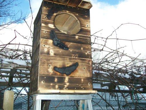 how to build an owl house