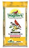 Lawn & Patio - Wagner's 76026 Four Season Oil Sunflower Seed, 20-Pound Bag