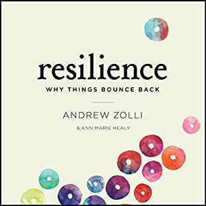 Resilience: Why Things Bounce Back | [Andrew Zolli, Ann Marie Healy]