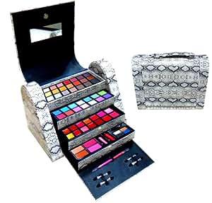 Amazon.com : SHANY Cosmetics Exclusive Snake Skin Makeup Kit, Dance