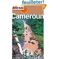 Petit Futé Cameroun